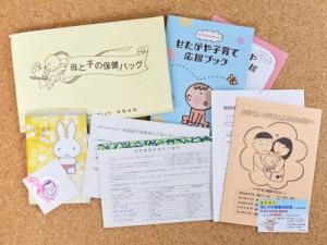 母と子の保険バッグ(東京都世田谷区)