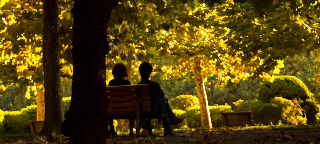 いい夫婦の日(11月22日)。円満夫婦から学ぶ、仲良しの秘訣!