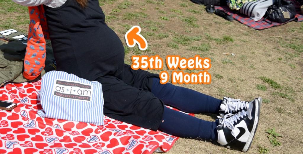妊娠35週目のお腹。