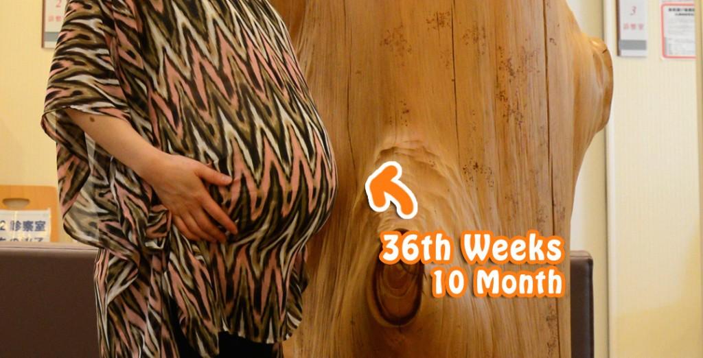ついに臨月!妊娠36週目のお腹。