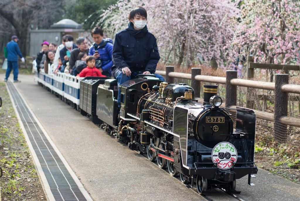 世田谷公園の汽車