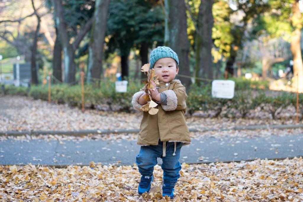 世田谷公園で落ち葉拾いを楽しむ鼓太郎。