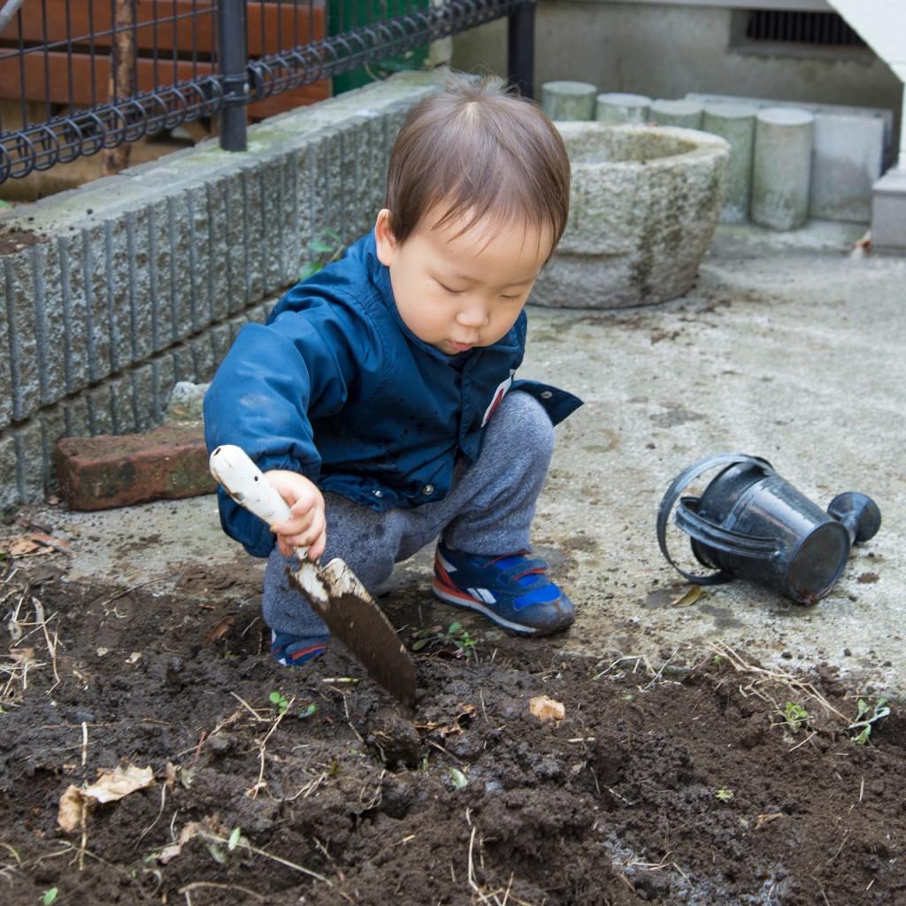 160305_hajimete_kateisaien_tsuchi_4