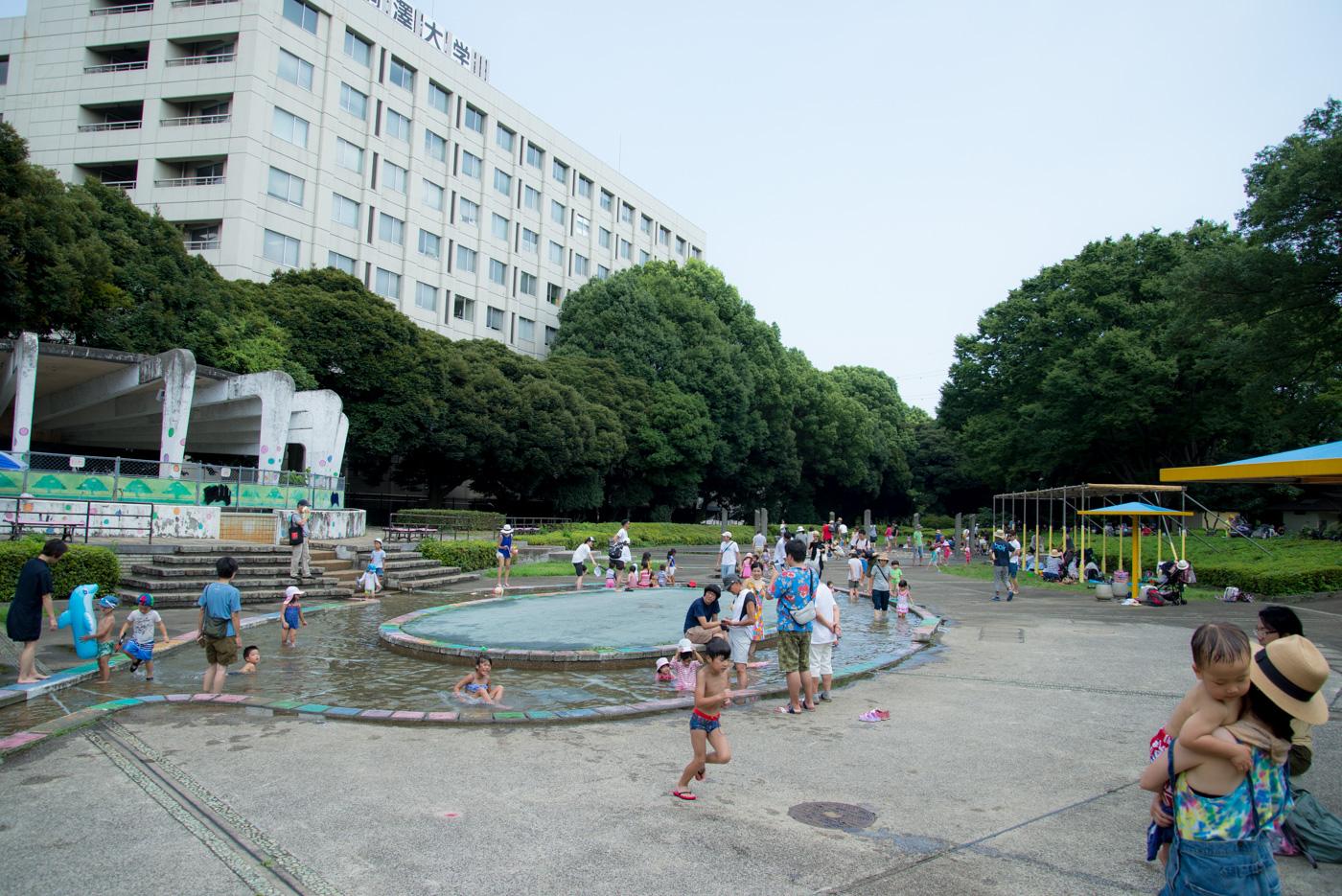 ジャブジャブ池(駒沢オリンピック公園)