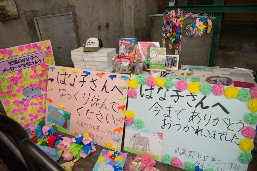 ゾウのはな子さんへ献花(井の頭公園の動物園 / 東京・吉祥寺)