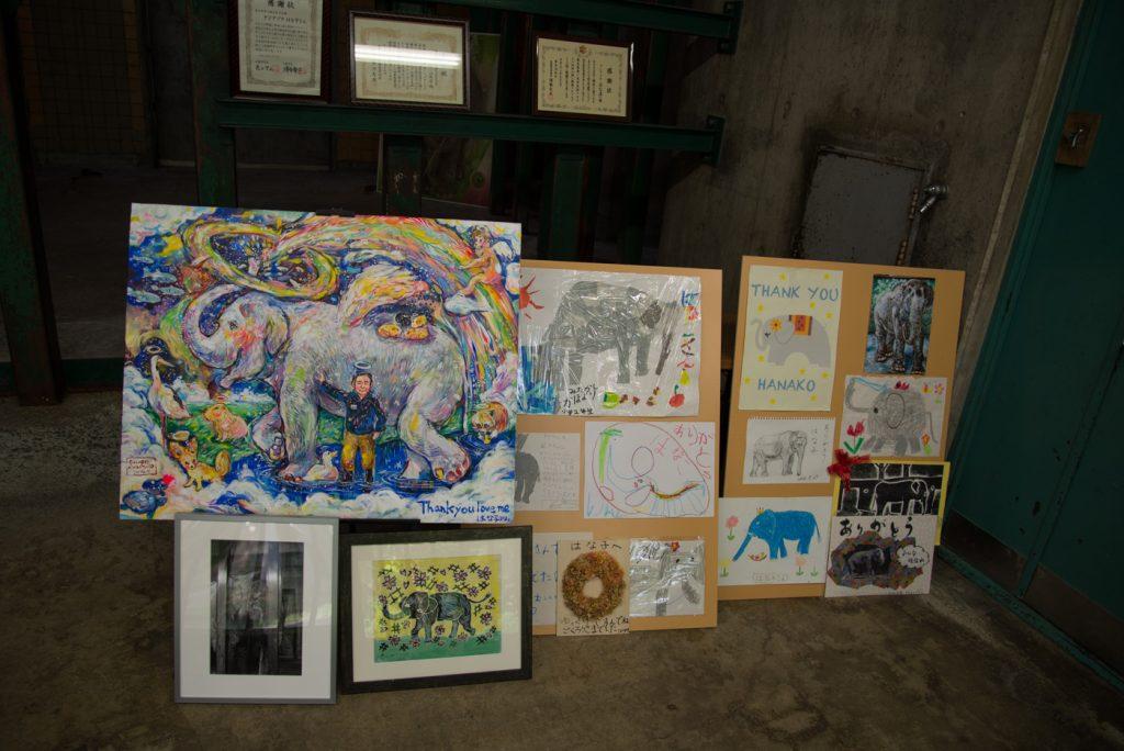 ゾウのはな子さんの絵や賞状(井の頭公園の動物園 / 東京・吉祥寺)