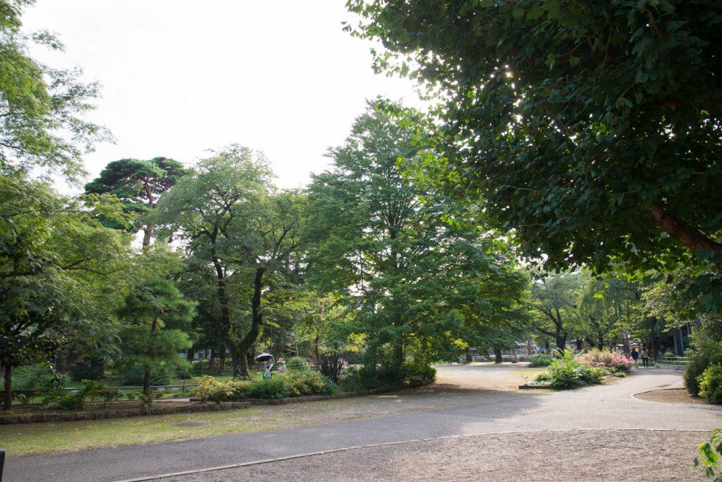 公園の木々。自然がいっぱい!(井の頭公園の動物園 / 東京・吉祥寺)