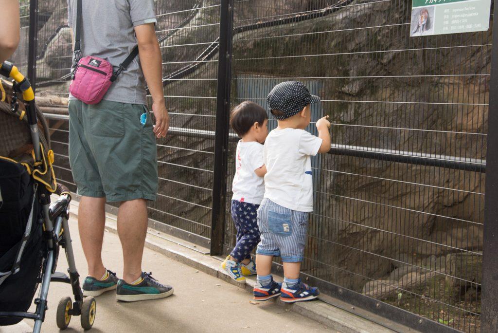 動物を覗き込む子供達(井の頭公園の動物園 / 東京・吉祥寺)