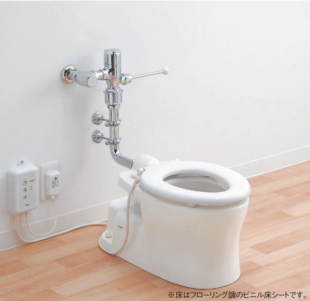 実際のトイレ写真ではありませんが、こんな感じの便器です