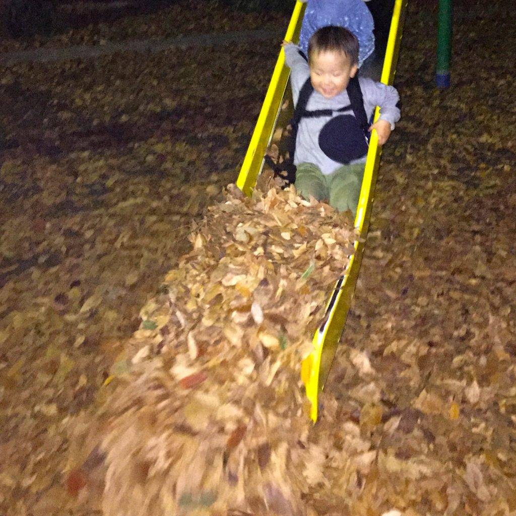 公園の落ち葉で遊ぶ鼓太郎。2歳半。