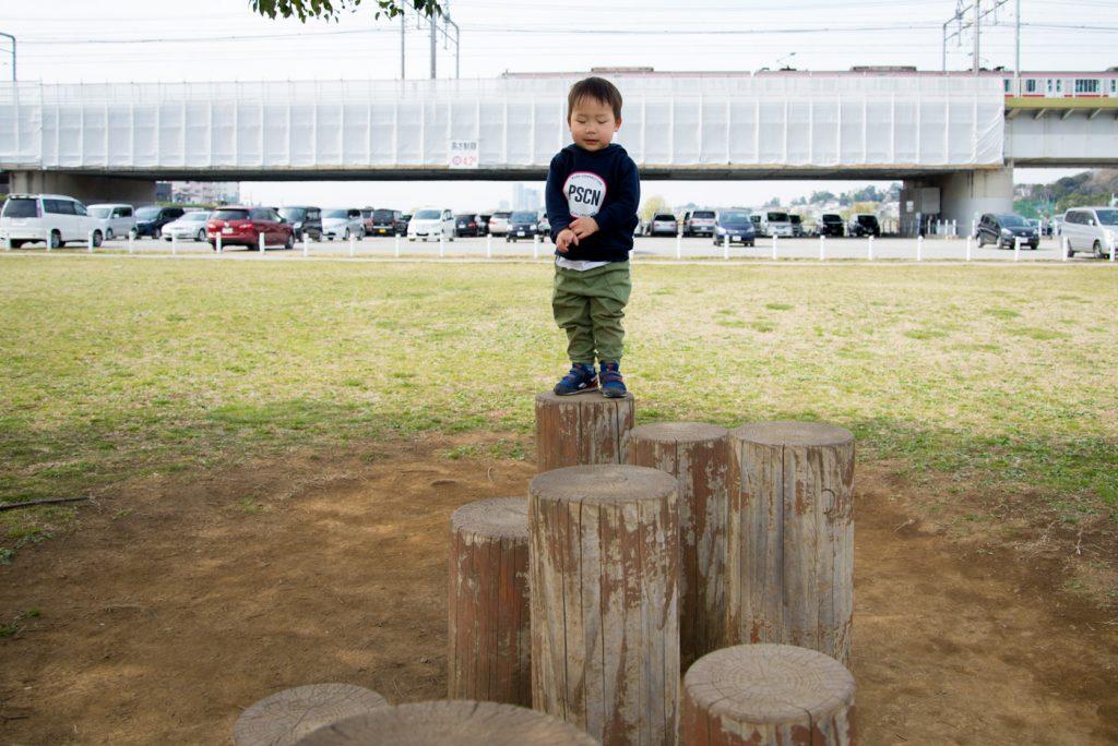 多摩川の河川敷 木の遊具
