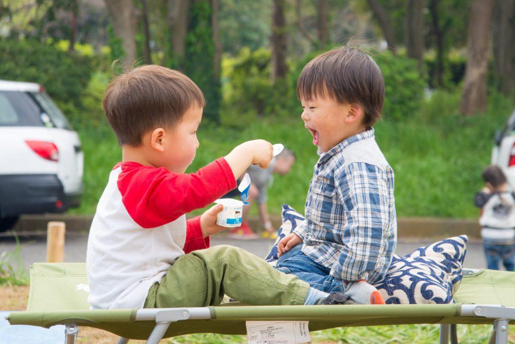 3歳と2歳の男の子が遊んでいる様子