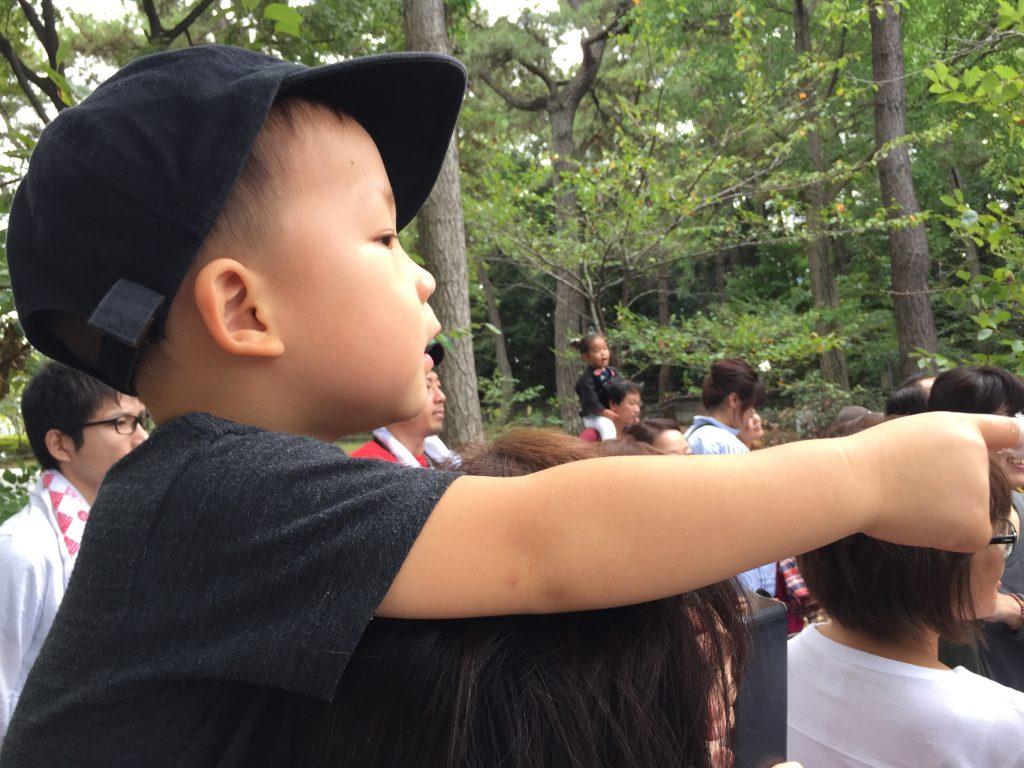 だんじりを見物する3歳5ヶ月の鼓太郎