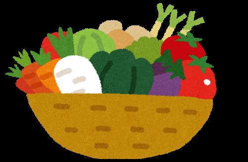 バスケットに盛られた野菜