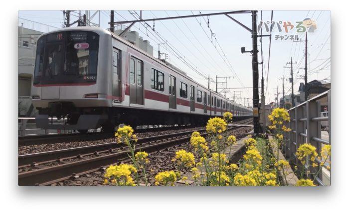 線路脇に咲く菜の花と電車