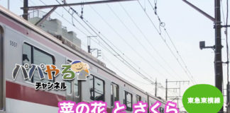 菜の花とさくら「春を感じる電車ムービー」東急東横線