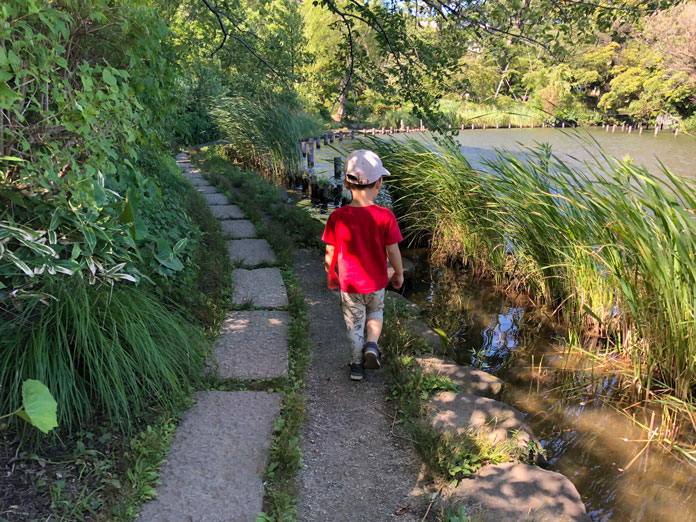 洗足池のまわりの散歩する息子