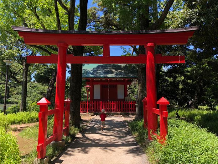 赤い神社の鳥居と息子