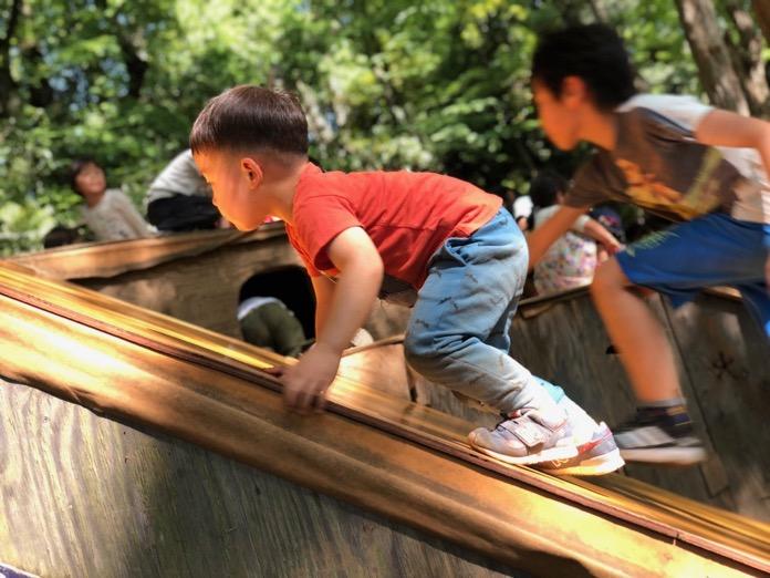 公園で元気に遊ぶ子どもたち