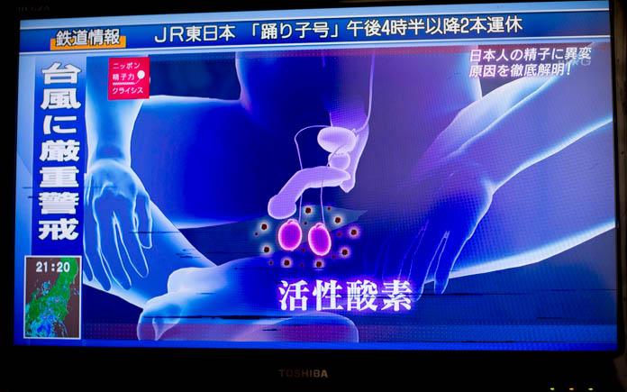 活性酸素が精巣の精子を攻撃