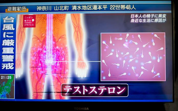 テストステロンが精子に悪影響