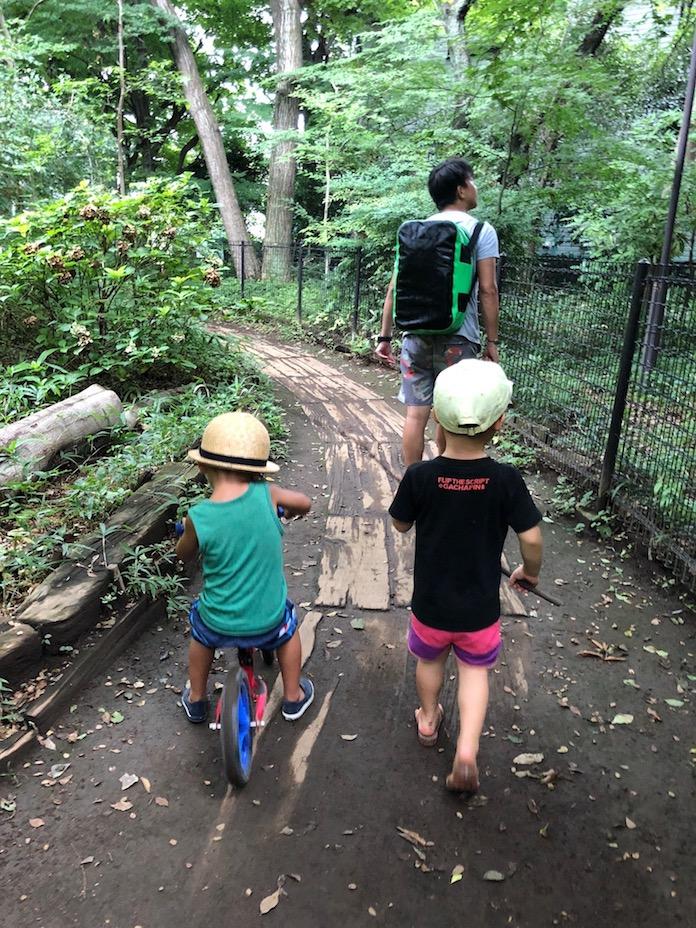 駒場野公園で歩く3歳と4歳の男の子
