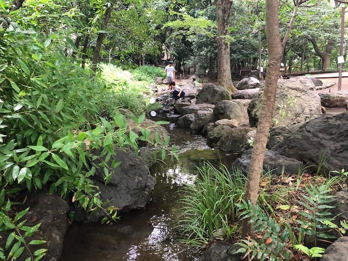 駒場野公園のじゃぶじゃぶ川