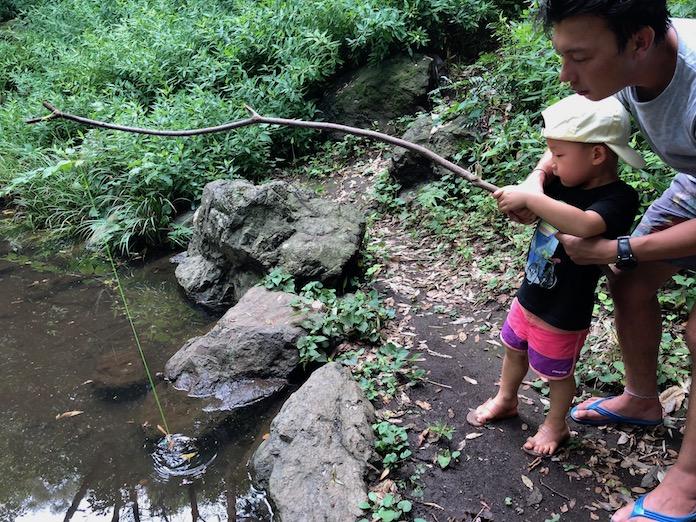 駒場野公園でザリガニを釣り上げる子どもと大人