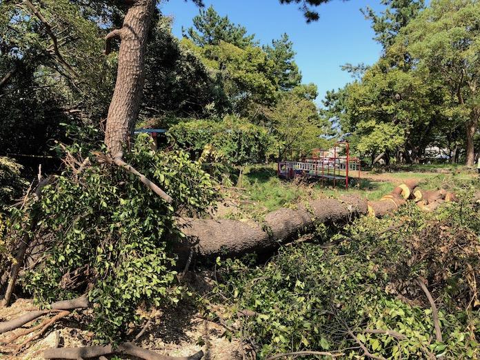 八幡公園 台風でぼろぼろになった公園