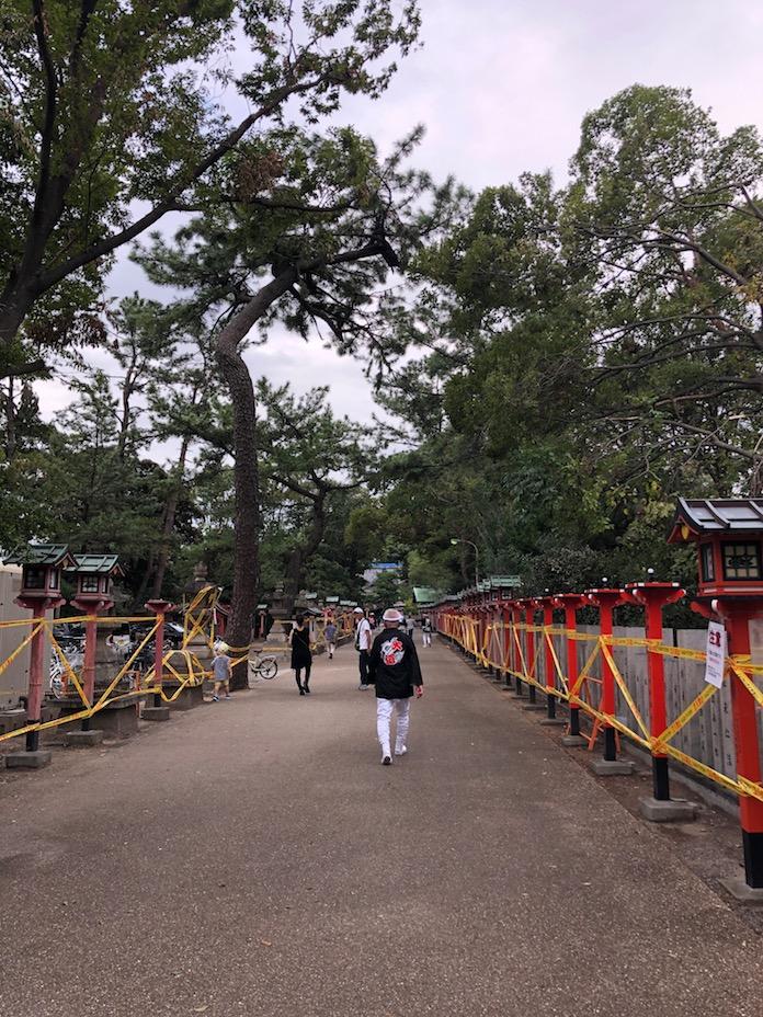 弥栄神社(岸和田市)灯篭ろ木々