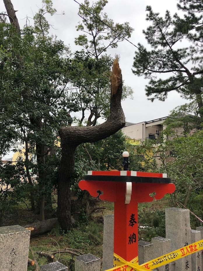 弥栄神社(岸和田市)台風で壊れた灯篭
