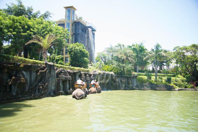 Bali Zoo(バリ動物園)Bali Zoo(バリ動物園)人を乗せた象が池を歩く