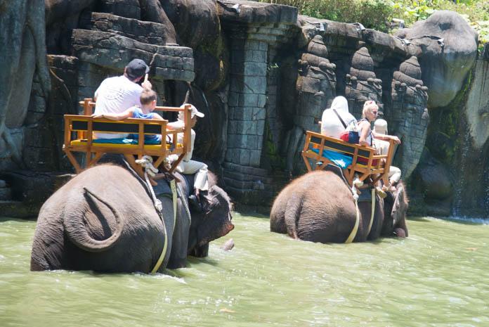 Bali Zoo(バリ動物園)Bali Zoo(バリ動物園)人を乗せた象が池を歩いている