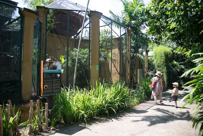Bali Zoo(バリ動物園)園内を歩く親子