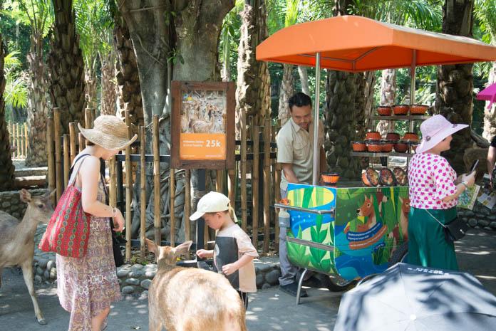 Bali Zoo(バリ動物園)鹿の餌の販売所