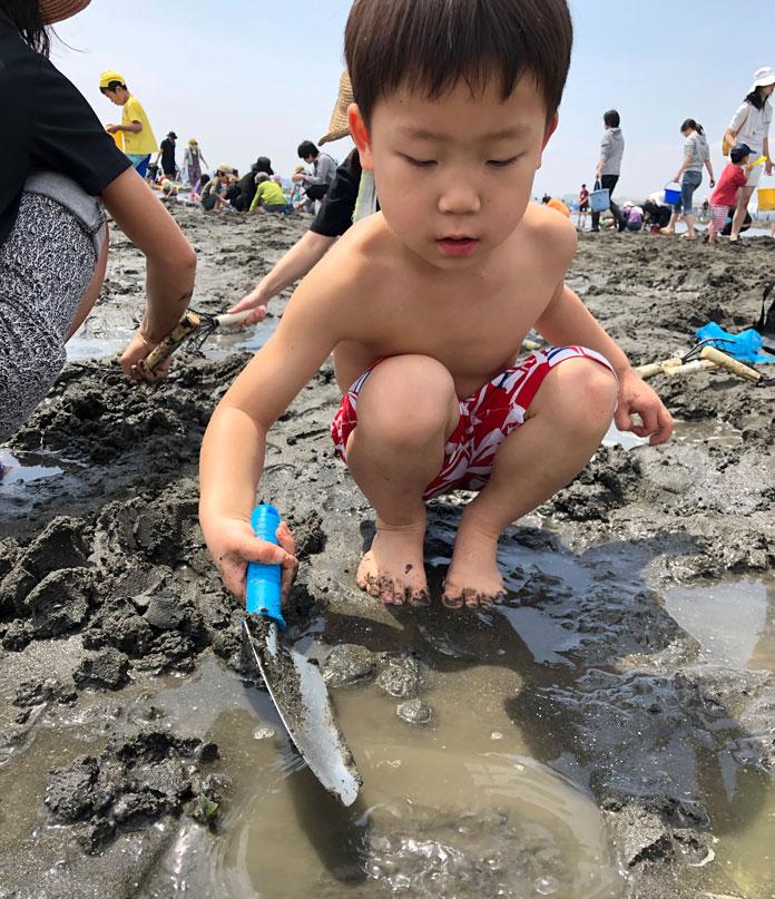 潮干狩りをする5歳の息子