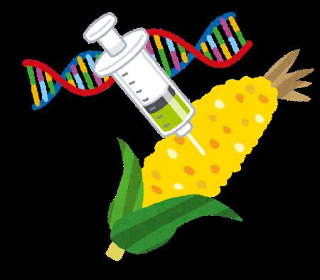 遺伝子組み換えのトウモロコシ