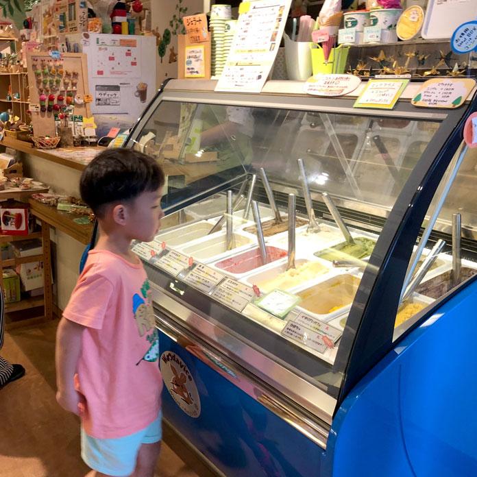 アイスクリームのショーケースを眺める男の子