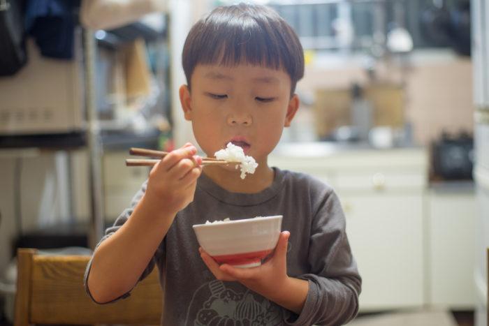 お茶碗を持ってお箸でごはんを食べる5歳の男の子
