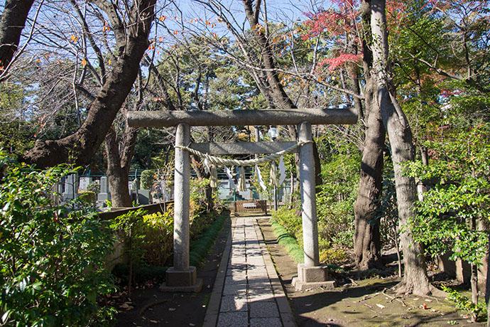 松蔭先生のお墓に向かう鳥居