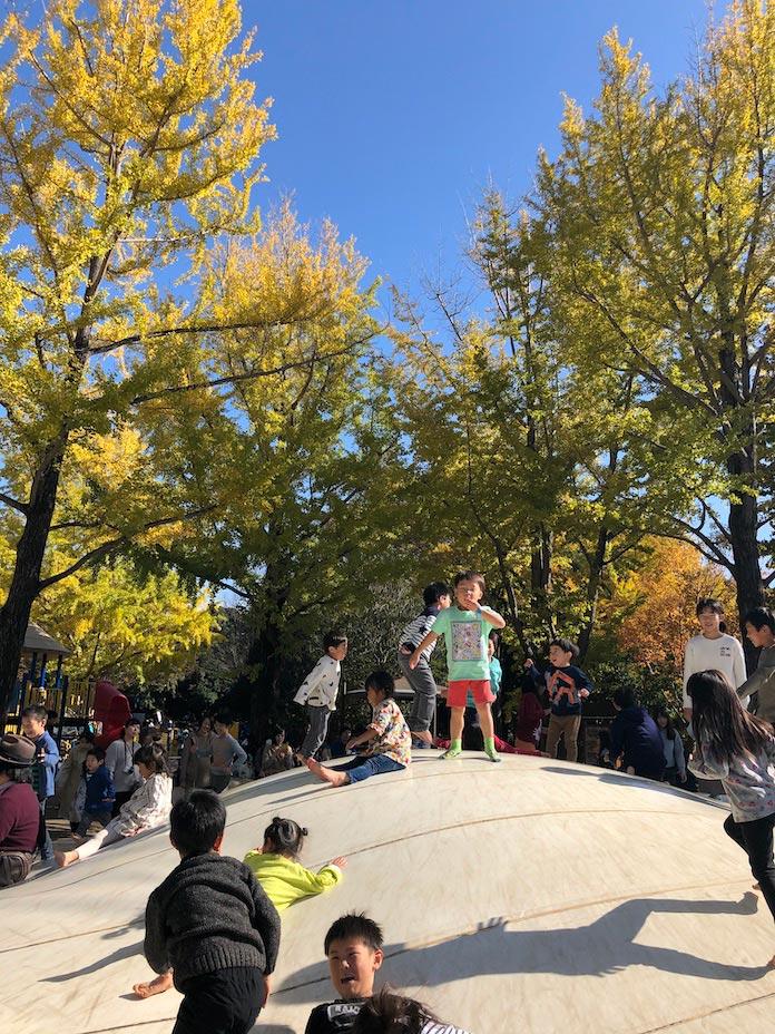 昭和記念公園のトランポリン
