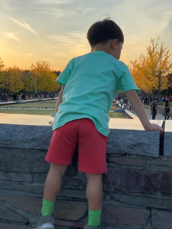 昭和記念公園の夕陽と子ども
