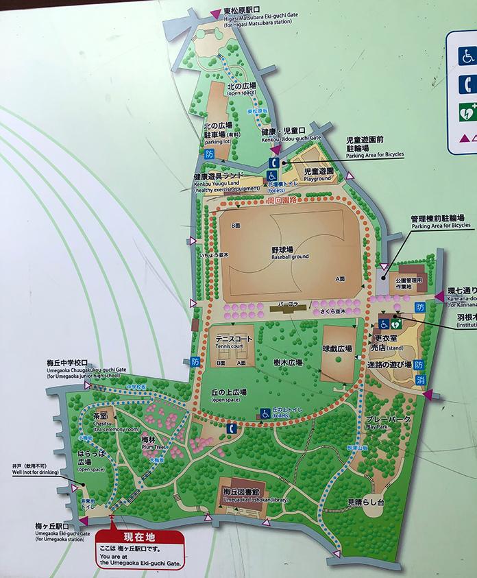 羽根木公園の園内マップ