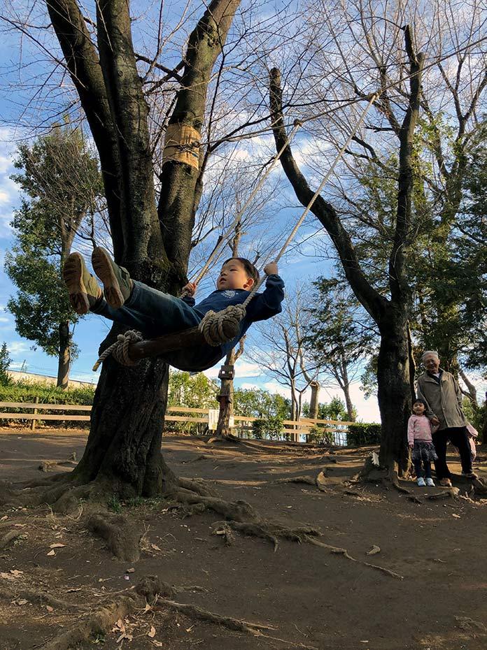 木にぶらさげたブランコで遊ぶ子ども 羽根木公園プレーパーク