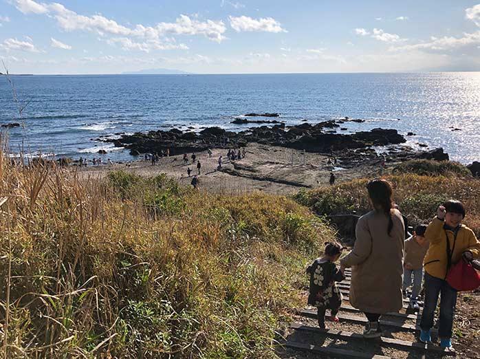 三浦半島の海岸(ソレイユの丘の散策路から眺める)
