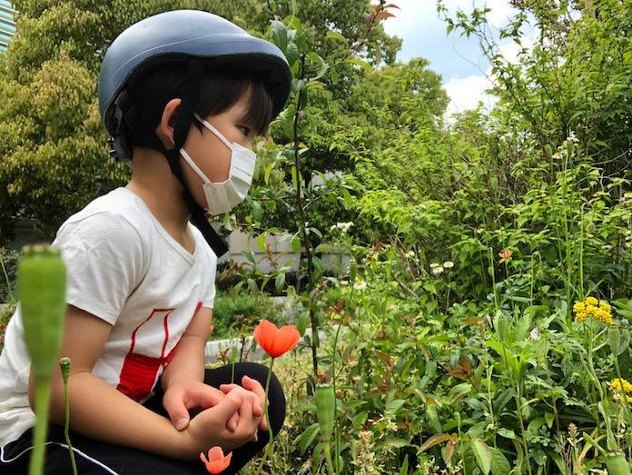 緑道の草花を見る子ども