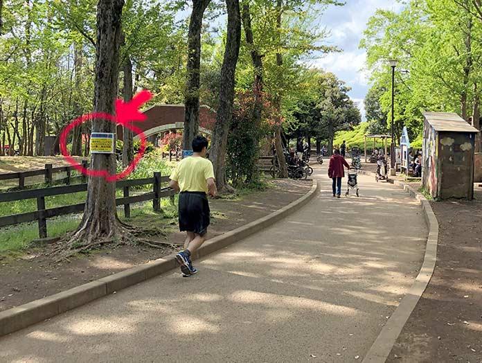 世田谷公園でマスクをつけずに走るランナー