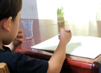 ノートを広げて言葉を書いている6歳の男の子