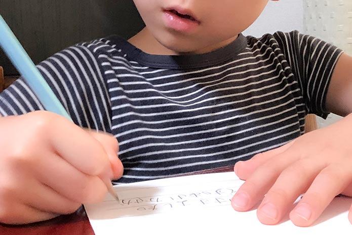 朝顔の観察日記を清書しているところ